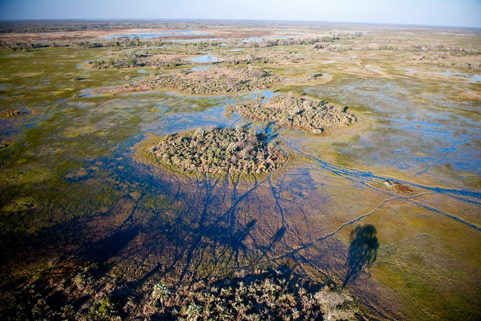 Okavango Flood